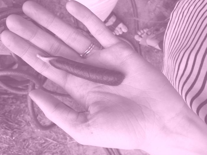 2012-06-28-15.41.29-c1452511042ffc8e2aecc76959c78b3f