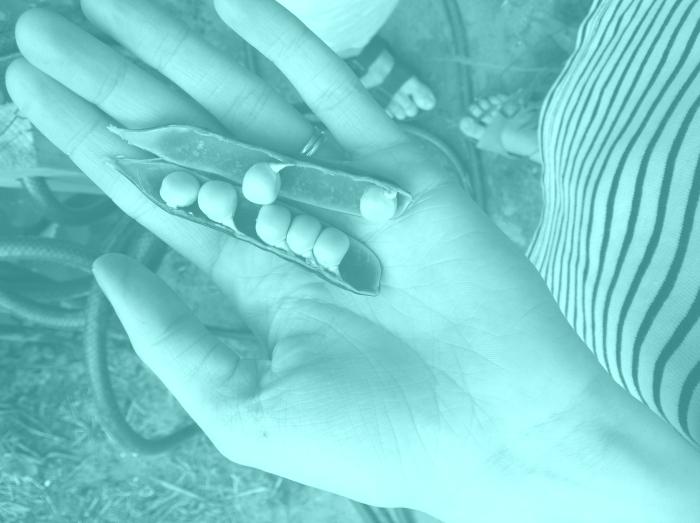 2012-06-28-15.41.45-e85eaef3f37320d61b82c2b881678bee