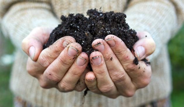 compost-in-handen-355e1f9d2abc4882340045c09f60a723