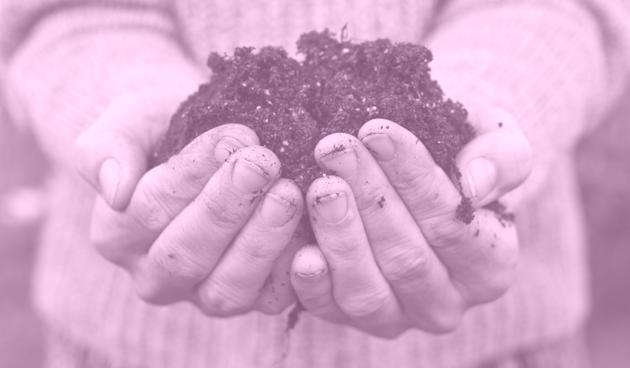 compost-in-handen-b45751bcd6732f7284b9934994aeeee6